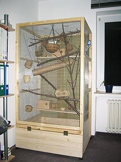 Käfig geschützt neben dem Fenster
